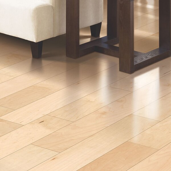 Kendra 5 Engineered Maple Hardwood Flooring in Matte Glossy Country Natural by Welles Hardwood