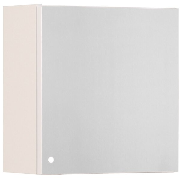 Luxy Surface Mount Frameless 1 Door Medicine Cabinet with 5 Adjustable Shelves