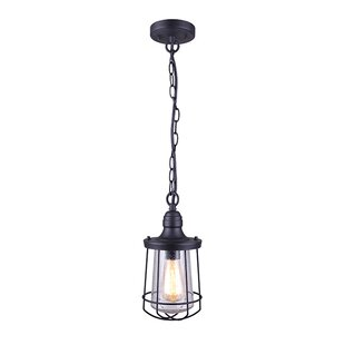 Check Prices Eugena 1-Light Outdoor Hanging Lantern By Williston Forge