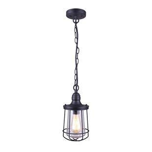 Best Eugena 1-Light Outdoor Hanging Lantern By Williston Forge