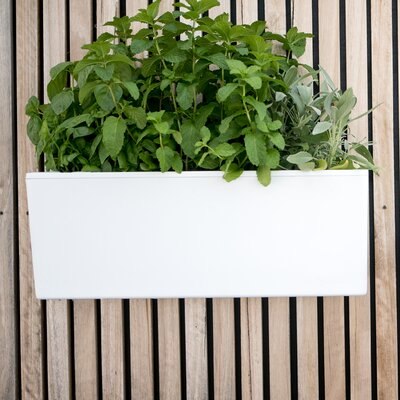 mini plastic wall planter