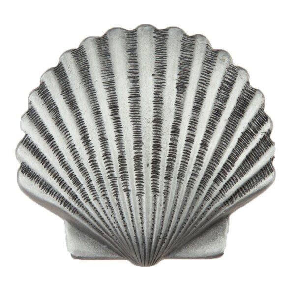 Small Scallop Novelty Knob by Acorn