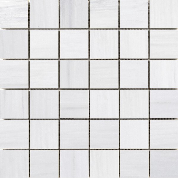 Latitude 2 x 2 Porcelain Mosaic Tile in White by Emser Tile
