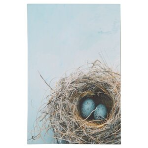 Blue Nest by Elena Ray Photographic Print on Wrapped Canvas by August Grove