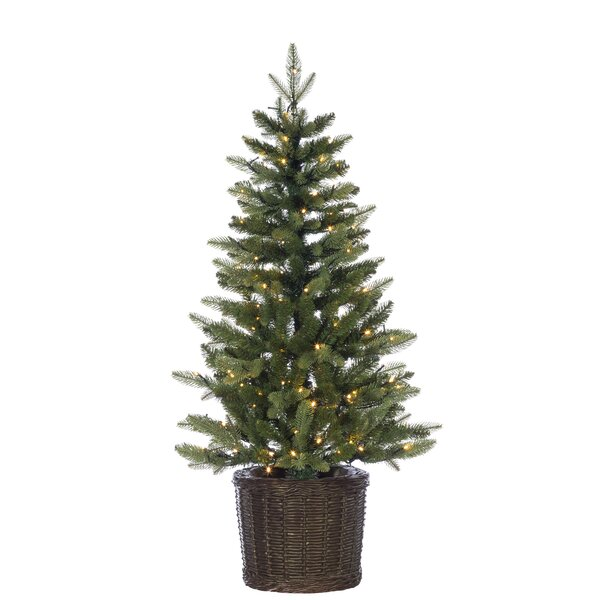 Potted Natural Cut Ontario Green Pine Artificial Christmas Tree with Stand by The Holiday Aisle