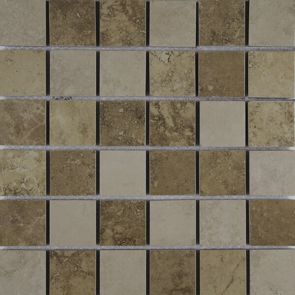Venice 2 x 2 Porcelain Mosaic Tile in Mixed by MSI