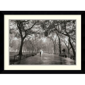 'Poet's Walk' Framed Photographic Print by Latitude Run