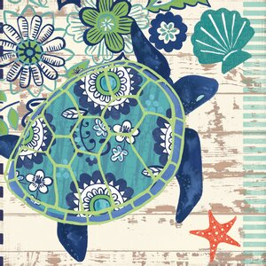Oceania Sand Dollars by Jennifer Brinley Graphic Art on Wrapped Canvas by Portfolio Canvas Decor