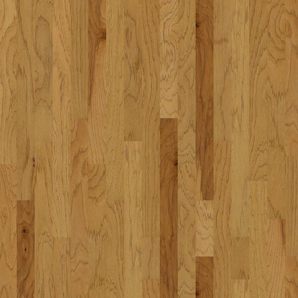 Globe 3-1/4 Engineered Hickory Hardwood Flooring in Hamburg by Shaw Floors