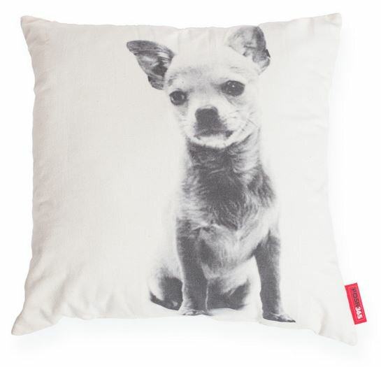 Expressive Chihuahua Dog Cotton Throw Pillow by Posh365