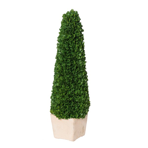 Faux Potted Tree Floor Boxwood Topiary by Charlton Home