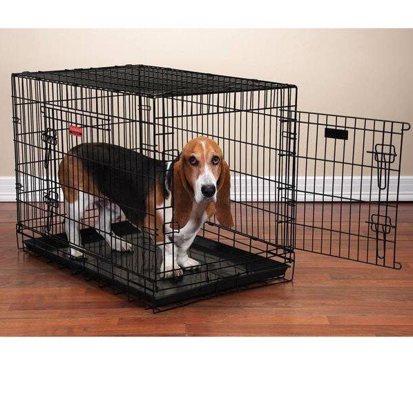 proselect everlasting folding pet crate & reviews   wayfair