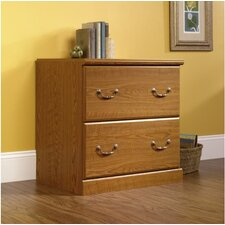 Oxford 2 Drawer File Chest by Charlton Home