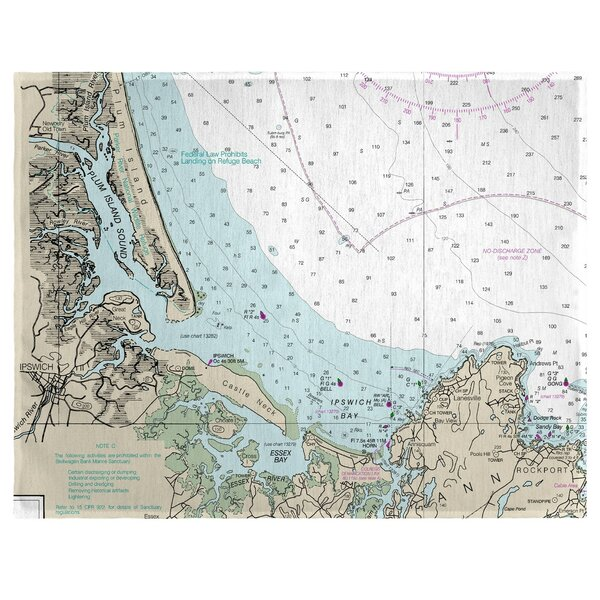 Plum Island Sound, MA 18 Placemat (Set of 4) by East Urban Home