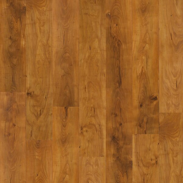 Fairfax Plus 8 x 48 x 8mm Pine Laminate Flooring in Herndon by Shaw Floors