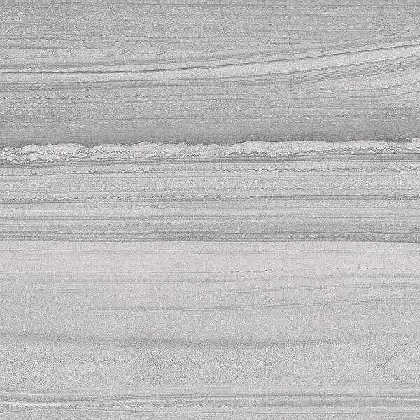 Lakestone 12 x 24 Porcelain Wood Look/Field Tile in Silver by Madrid Ceramics