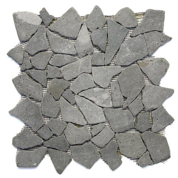Decorative Pebbles Random Sized Natural Stone Pebble Tile in Java Black by Solistone