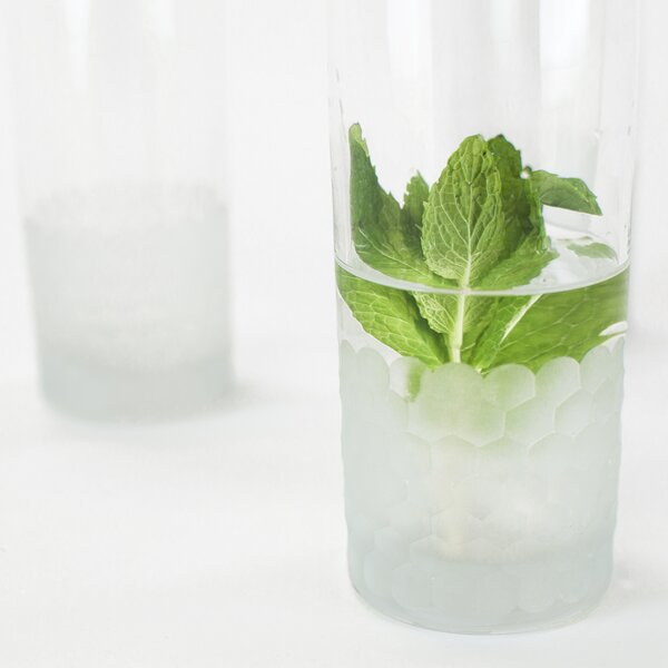 Plourde Every Day Glass (Set of 6) by Latitude Run