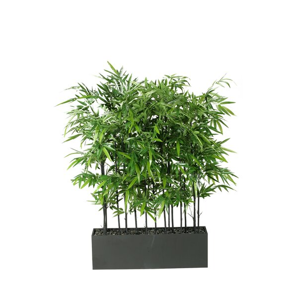 Bamboo Tree in Planter by World Menagerie
