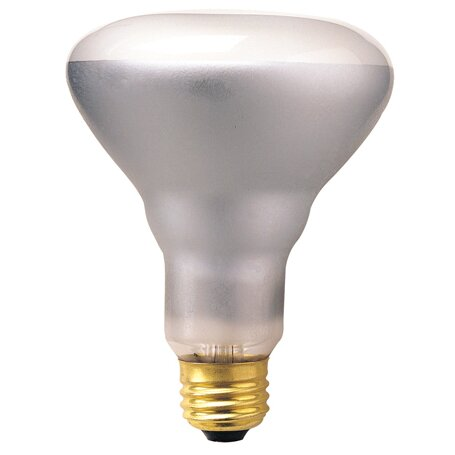 65W 130-Volt (2700K) Incandescent Light Bulb (Set of 14) by Bulbrite Industries