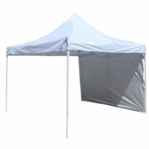 Collapsible 10 Ft. W x 10 Ft. D Metal Pop-Up Canopy by ALEKO