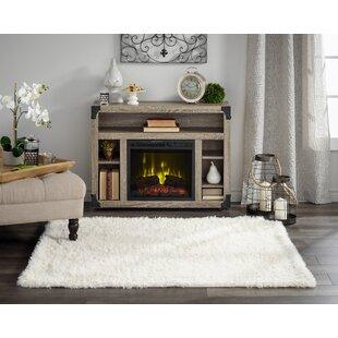 40-49 inch Fireplace TV Stands & Entertainment Centers You'll Love