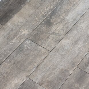 Farmstead 6 X 24 Porcelain Wood Look Tile In Winder