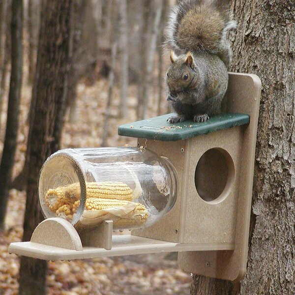 Recycled Jar Squirrel Feeder by Birds Choice
