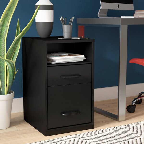 Bourassa 2 Drawer Filing Cabinet by Rebrilliant