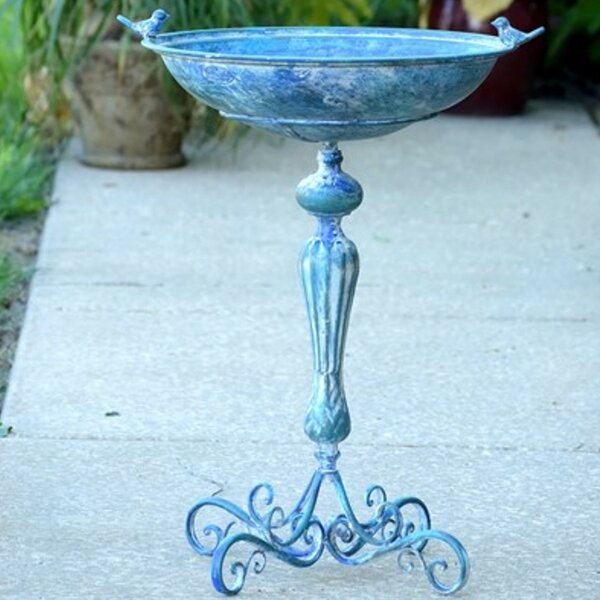 Pedestal Birdbath by Zaer Ltd International