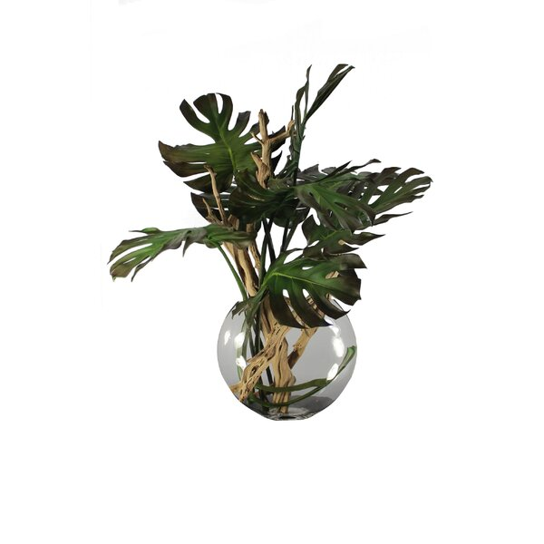 Monstera Leaves and Driftwood in Moon Vase by Bayou Breeze