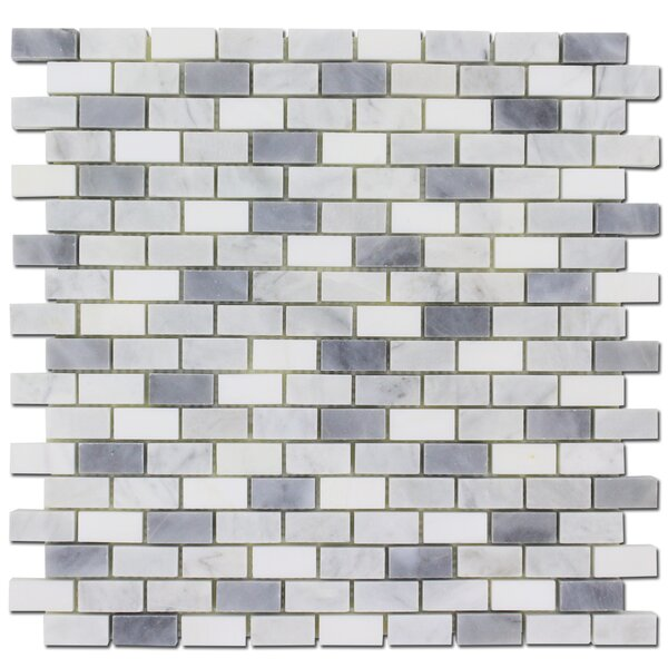 Adriatica 1 x 1 Marble Subway Wall & Floor Tile