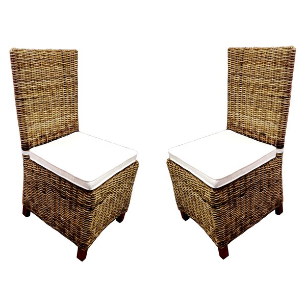Dining Patio Dining Chair with Cushion (Set of 2)