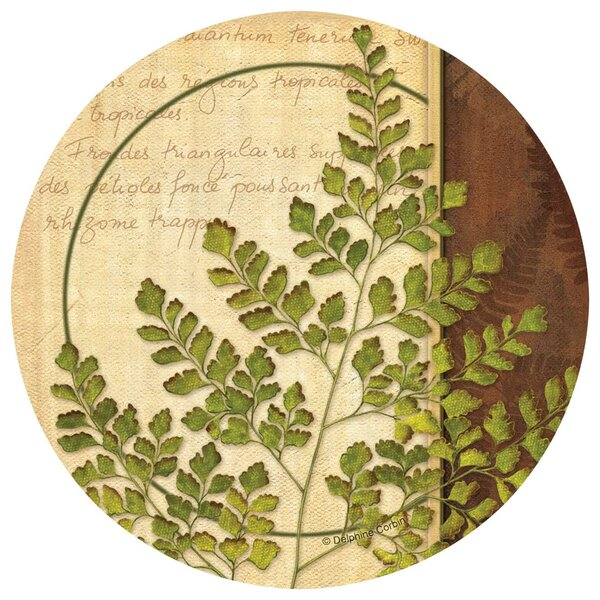 Ferns I Occasions Coaster (Set of 4) by Thirstystone