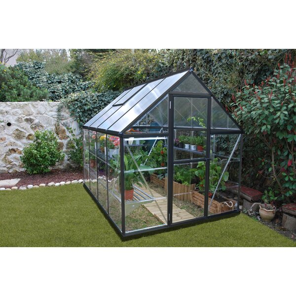 Hybrid 6 Ft. W x 8 Ft. D Greenhouse by Palram