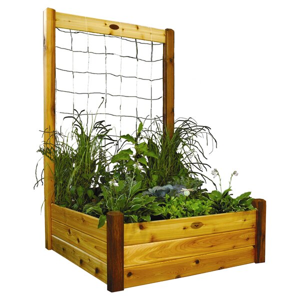 Cedar Raised Garden Planter Trellis by Gronomics