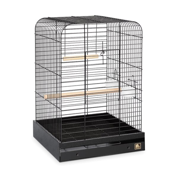 Parrot  Bird Cage by Prevue Hendryx