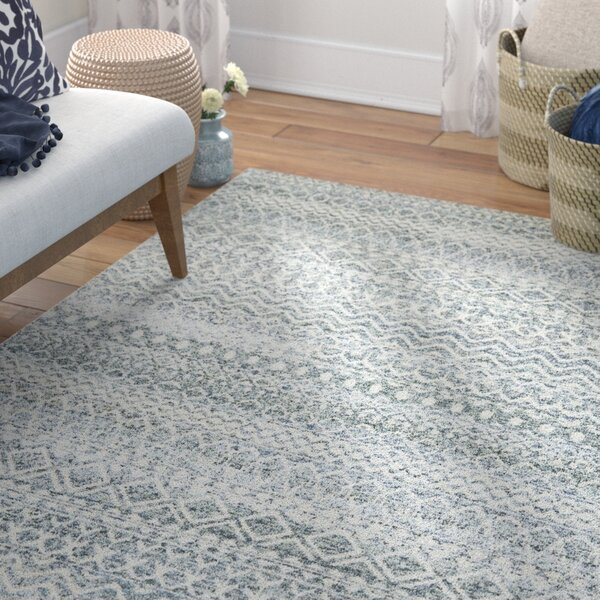Lavonia Hand Knotted Gray Rug