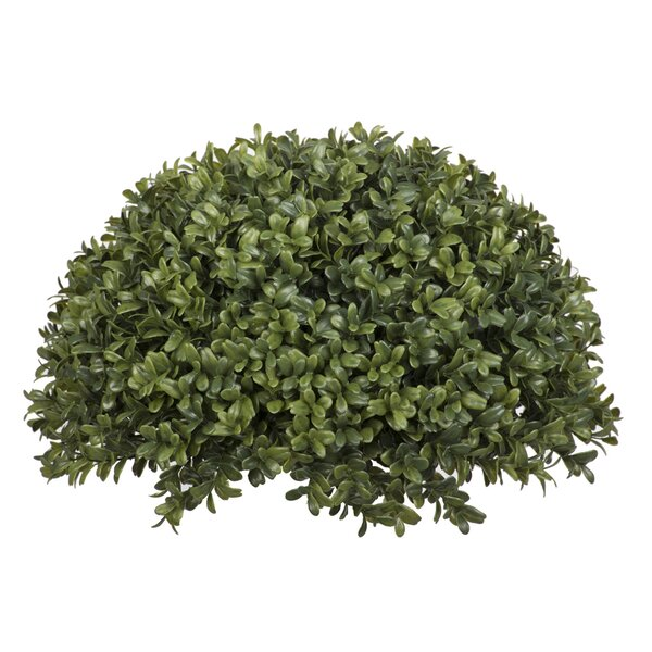 Artificial Boxwood Half Ball Desk Top Plant by House of Silk Flowers Inc.