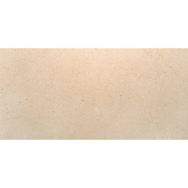 Rio Grande 12 x 24 Porcelain Field Tile in Brook by Emser Tile