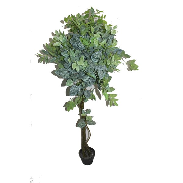 Net Shape Leaf Floor Ficus Tree in Pot by Red Barrel Studio