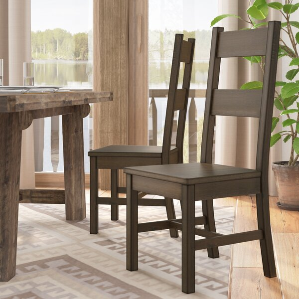Jacobson Side Chair (Set of 2) by Mistana