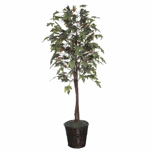 Economy Artificial Potted Natural Frosted Maple Tree in Basket by Alcott Hill