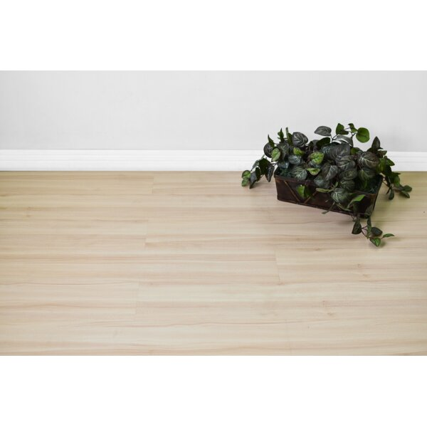 Veeren 8 x 48 x 8mm Maple Laminate Flooring in Beige by Serradon