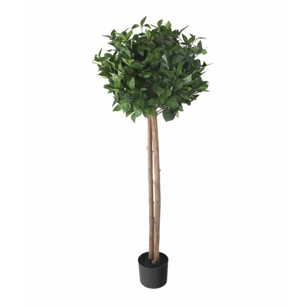 Artificial Floor Foliage Tree in Pot by Gracie Oaks