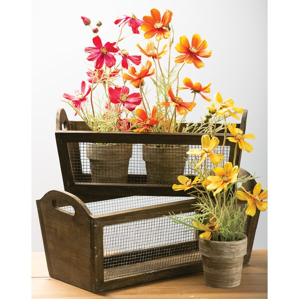 Bernard 2 Piece Wood Planter Box Set by Gracie Oaks