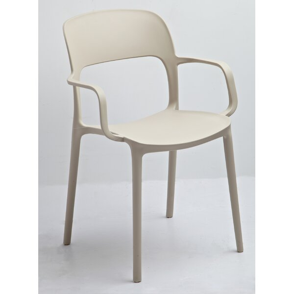 Jason Arm Chair (Set of 2) by Gold Sparrow