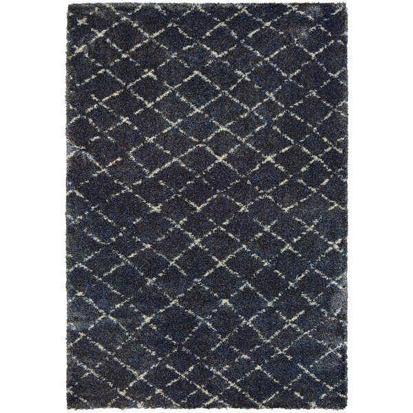 Kimberly Navy/Gray Area Rug by Langley Street