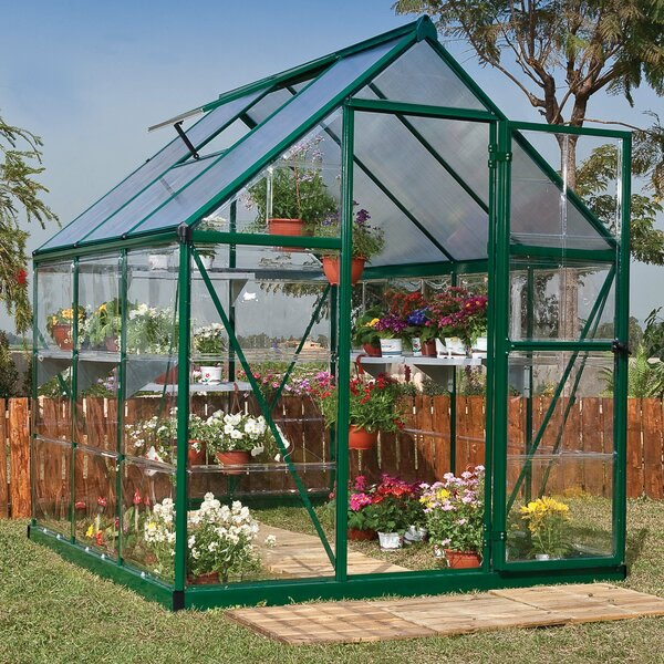Hybrid 6 Ft. W x 6 Ft. D Greenhouse by Palram