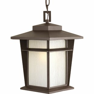Top Reviews Cathrine 1-Light Hanging Lantern By Loon Peak